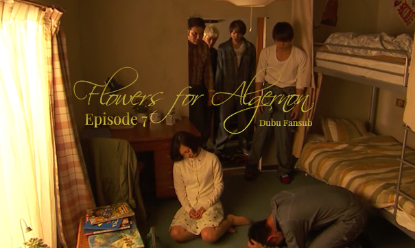flowers for algernon episode 7 vostfr