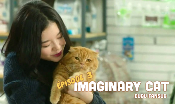 imaginary cat episode 3 vostfr